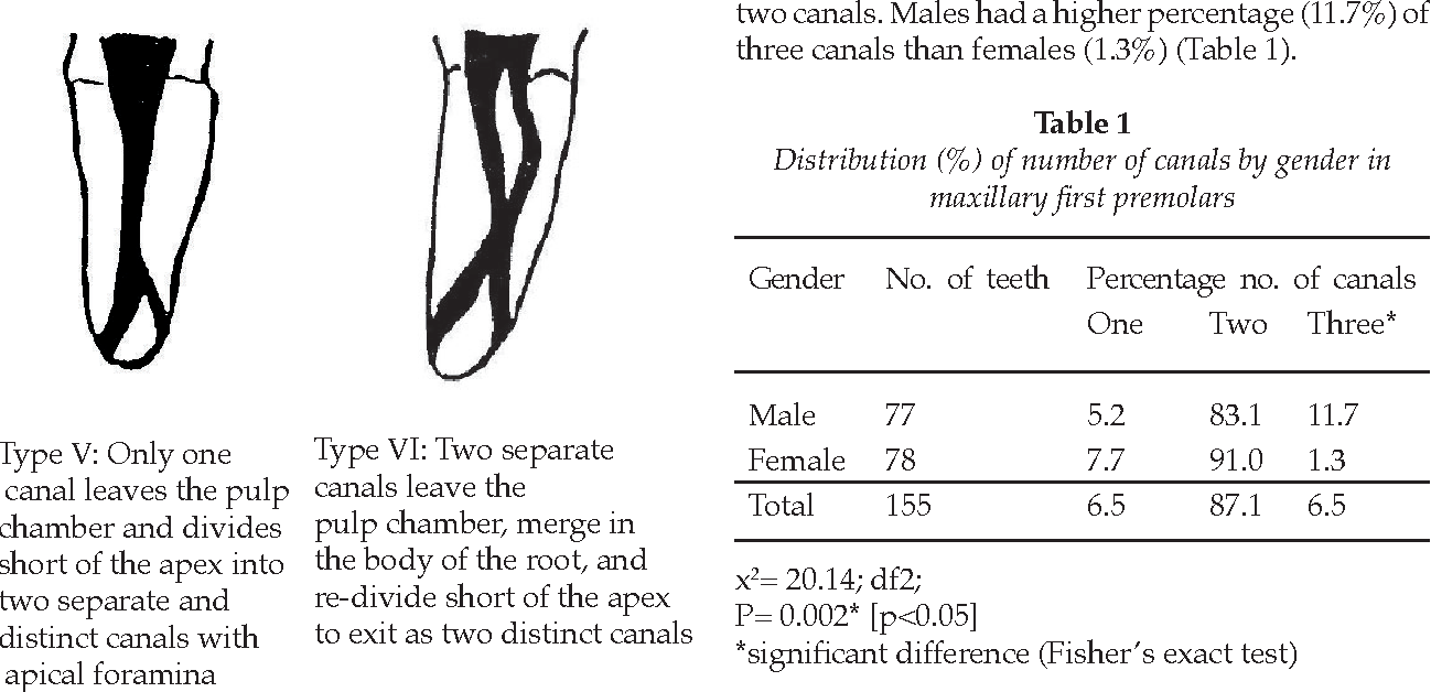Table 1 from Internal root morphology of the maxillary first ...