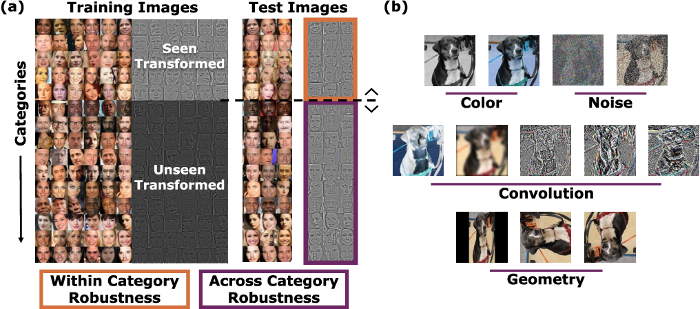 Figure 1 for Is Robustness To Transformations Driven by Invariant Neural Representations?