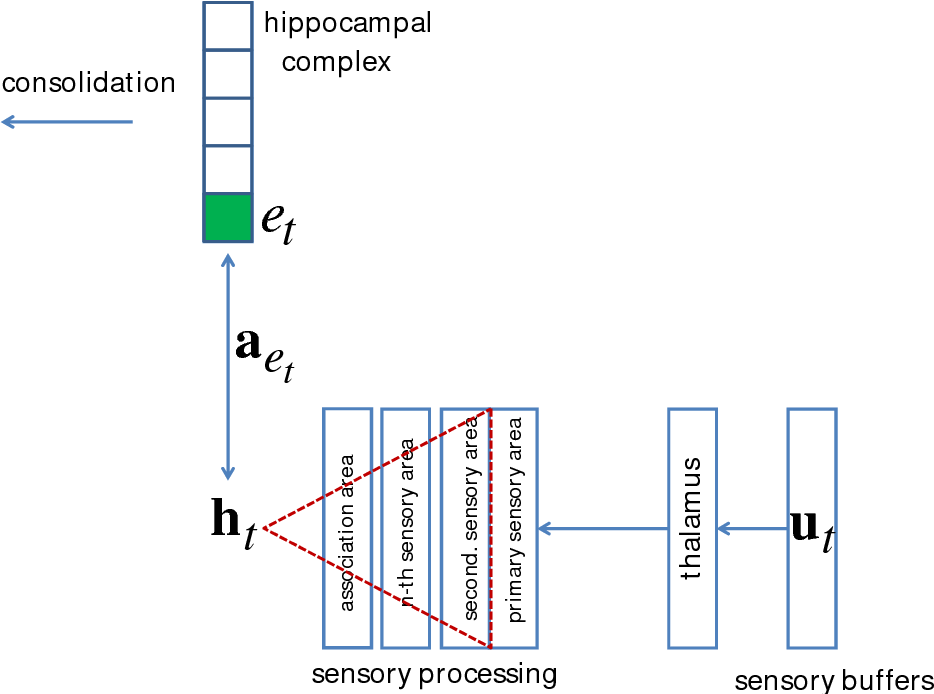 Figure 1 for The Tensor Memory Hypothesis