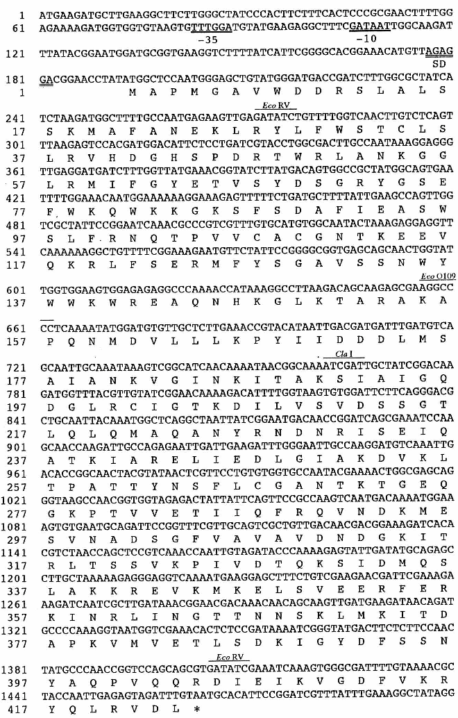 Cloning, expression, and sequencing of a protease gene from