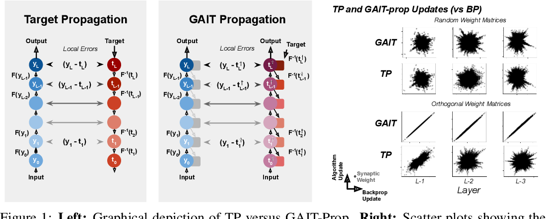 Figure 1 for GAIT-prop: A biologically plausible learning rule derived from backpropagation of error