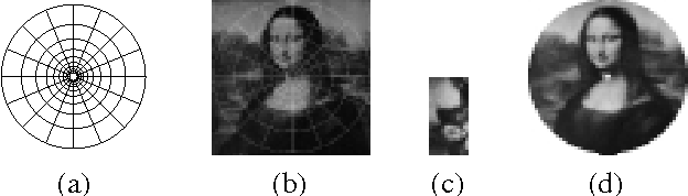 Figure 1. Log-polar mapping: (a) grid layout example (10 16), (b) original cartesian image (256 256), with grid (a) overlapped, (c) cortical image (64 128), (d) retinal image (256 256) obtained from (c) by the inverse mapping.