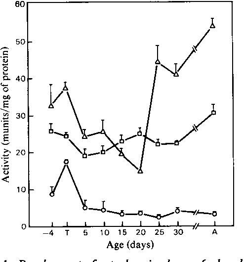 Development of nadph producing pathways in rat heart semantic scholar figure 1 ccuart Choice Image