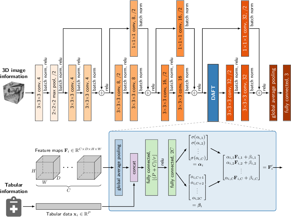 Figure 1 for Combining 3D Image and Tabular Data via the Dynamic Affine Feature Map Transform