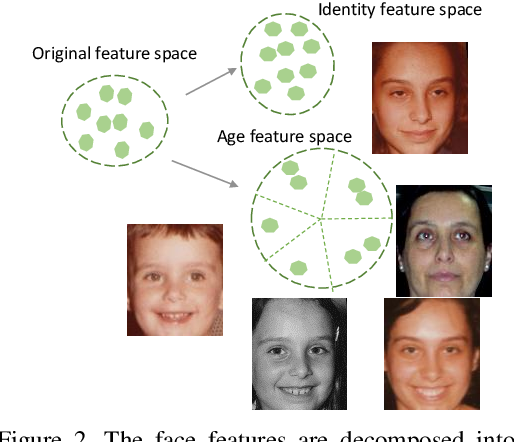 Figure 3 for Decorrelated Adversarial Learning for Age-Invariant Face Recognition