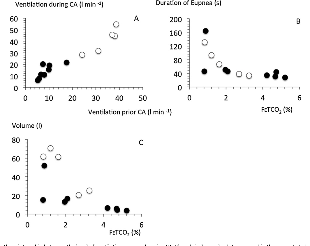 Breathing During Cardiac Arrest Following Exercise A New Function