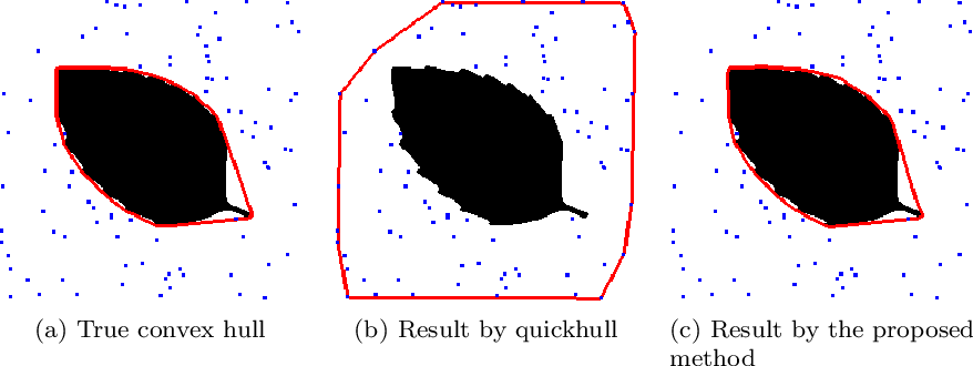 Figure 3 for Convex hull algorithms based on some variational models