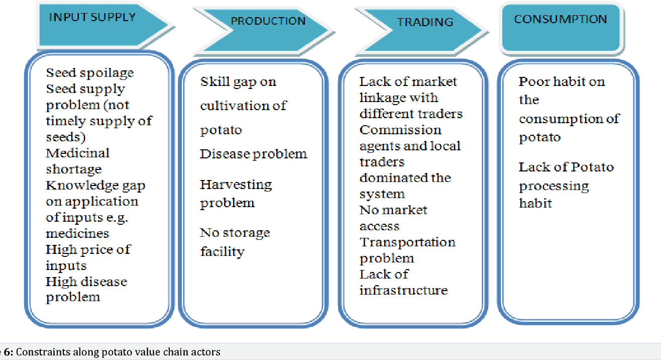 Figure 6 from Value Chain Analysis of Potato: The Case of Sheka Zone