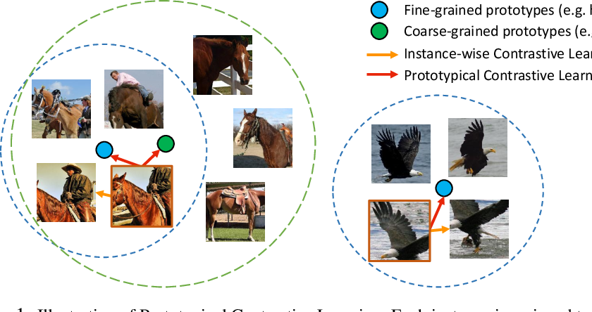 Figure 1 for Prototypical Contrastive Learning of Unsupervised Representations