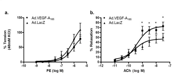 figure 5 from maternal therapy with ad vegf a165 increases fetal rh semanticscholar org