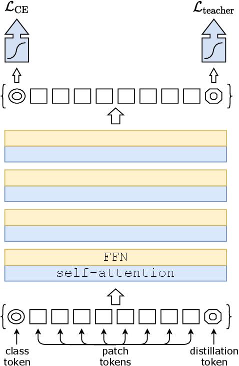 Figure 3 for Training data-efficient image transformers & distillation through attention