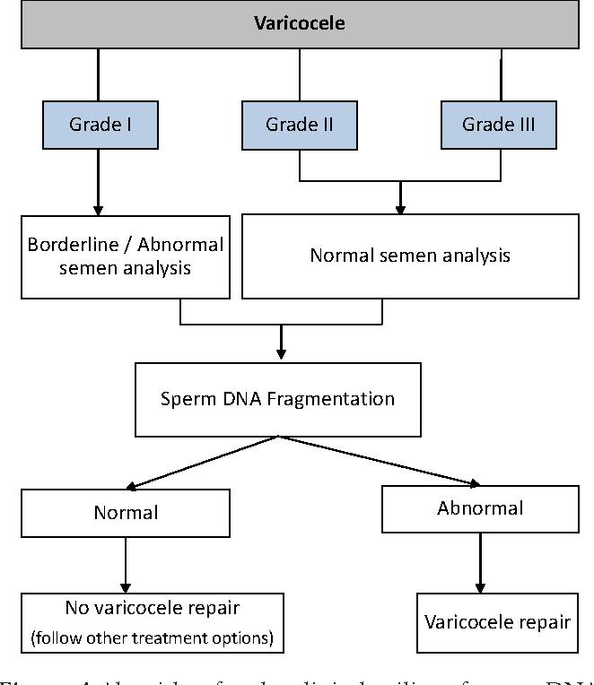 dna-sperm-testing