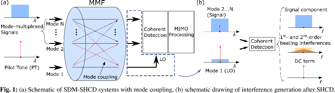 Figure 1 for Digital Interference Mitigation in Space Division Multiplexing Self-Homodyne Coherent Detection