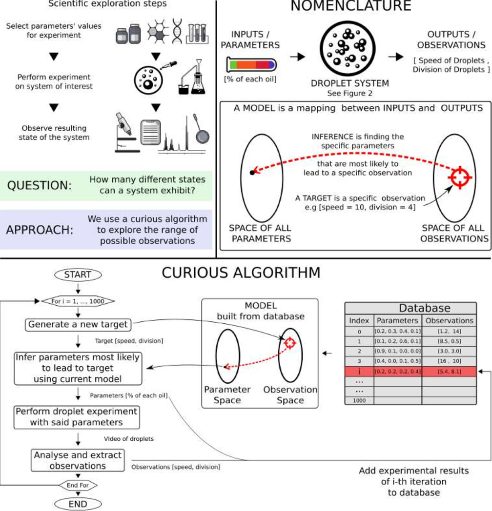 Figure 1 for Exploration of Self-Propelling Droplets Using a Curiosity Driven Robotic Assistant