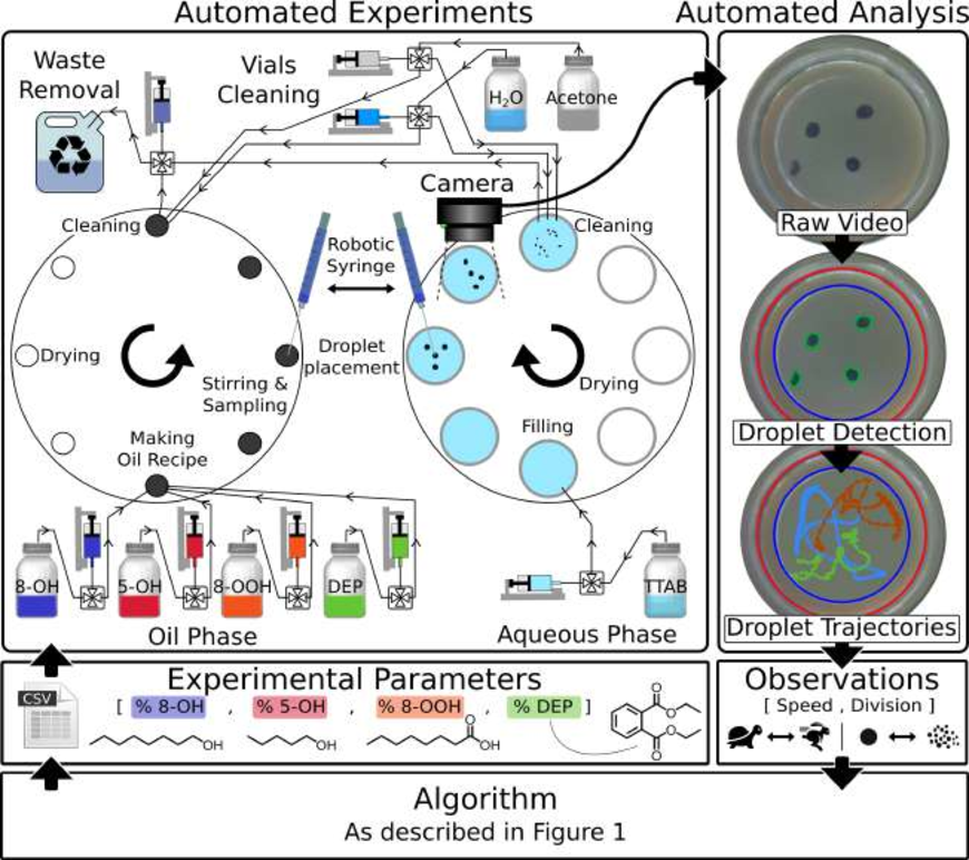 Figure 2 for Exploration of Self-Propelling Droplets Using a Curiosity Driven Robotic Assistant