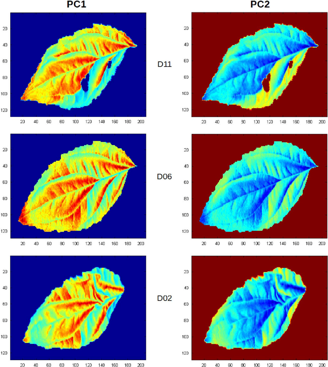 Figure 3 from Near infrared hyperspectral dataset of healthy and