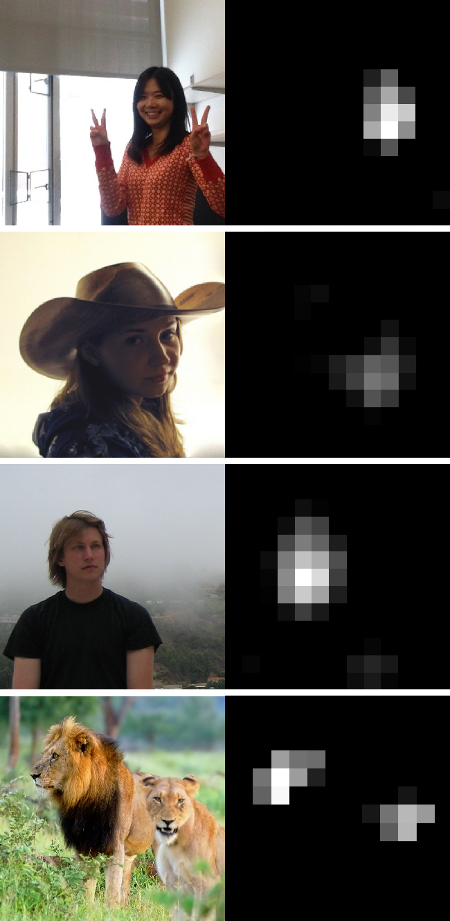 Figure 3 for Understanding Neural Networks Through Deep Visualization