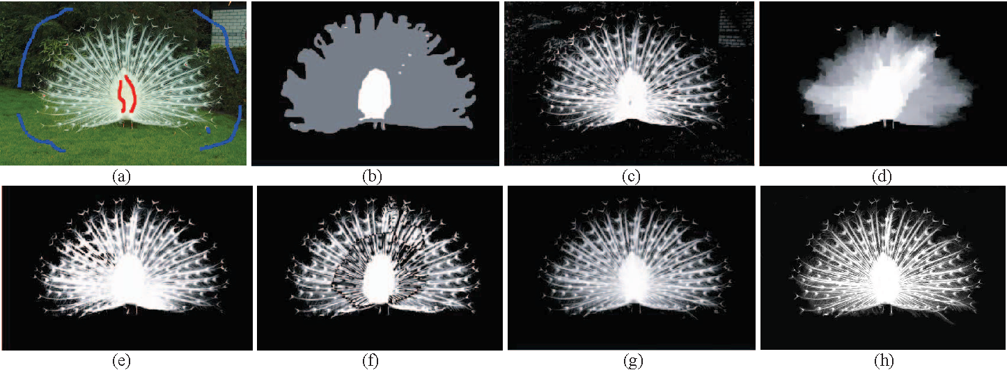 Fig. 5. (a) Scribbled peacock. (b) Peacock trimap. (c) Poisson from scribbles. (d) Random walk. (e) Poisson from trimap. (f) Bayesian. (g) Levin. (h) Ant colony approach (our result). Images (b), (c), (d), (e), (f), (g) are taken from [10].