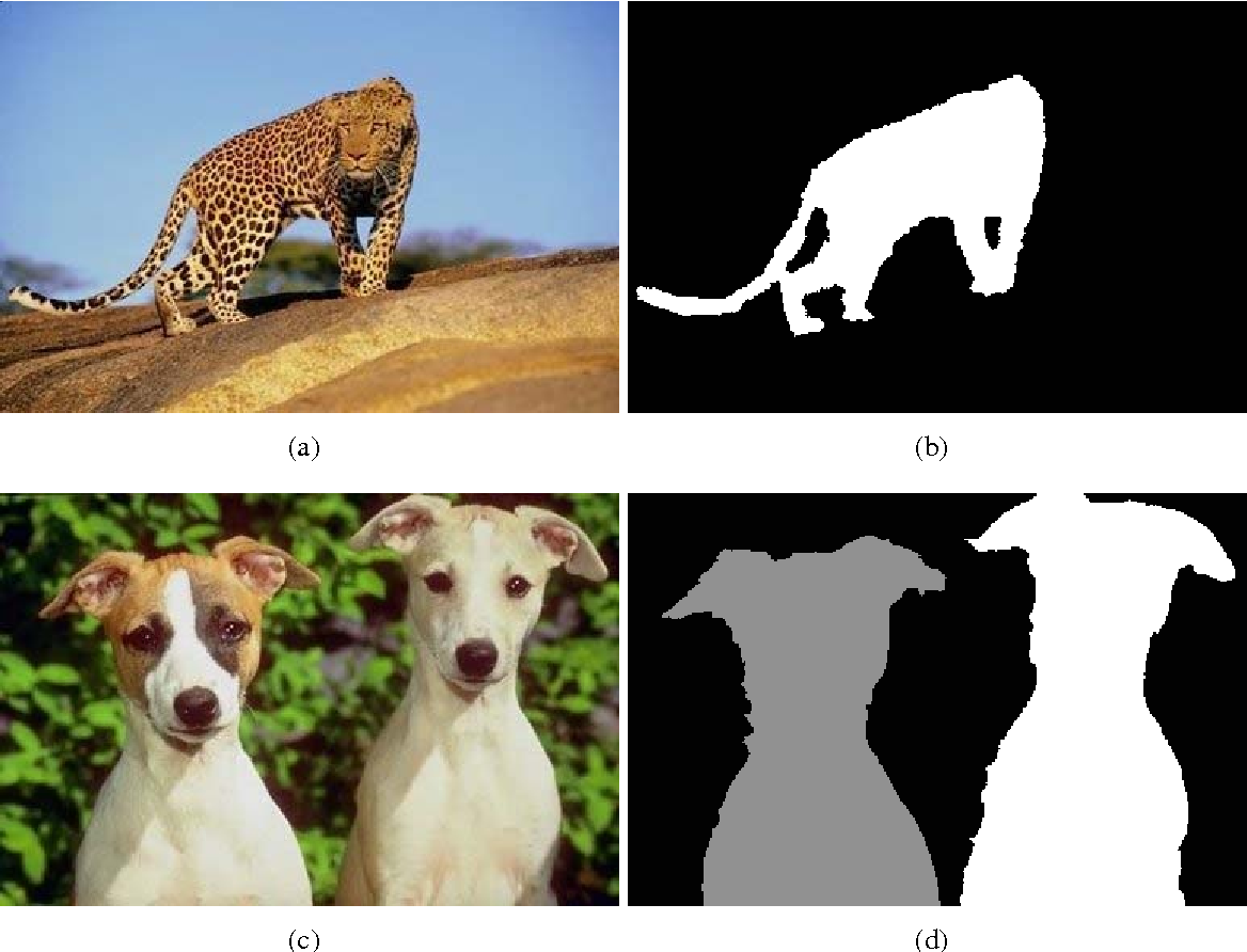 Figure 3 from A Dataset of Annotated Animals - Semantic Scholar