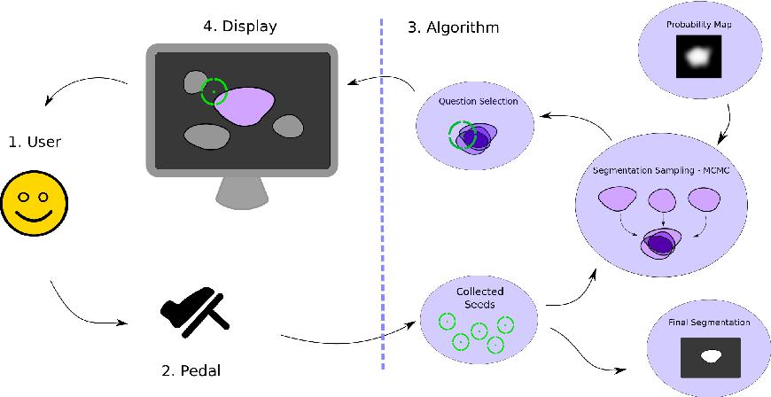 Figure 1 for Hands-Free Segmentation of Medical Volumes via Binary Inputs