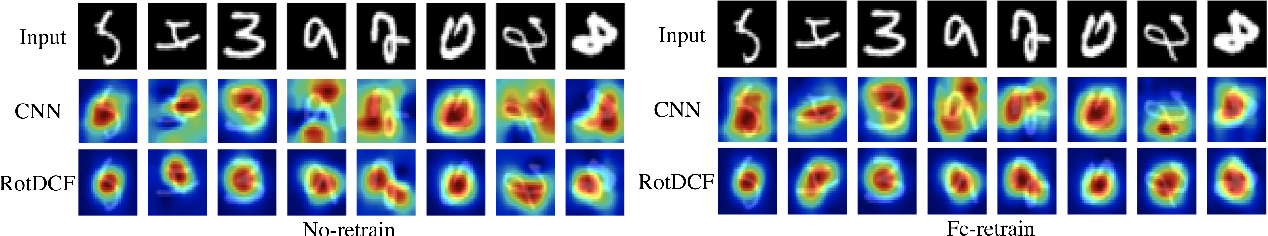 Figure 4 for RotDCF: Decomposition of Convolutional Filters for Rotation-Equivariant Deep Networks