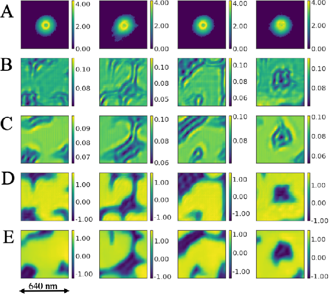 Figure 2 for Real-time sparse-sampled Ptychographic imaging through deep neural networks