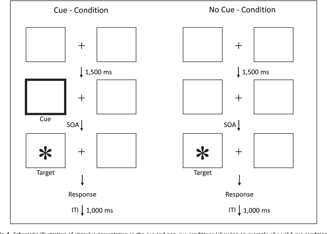 Figure 1 from Inhibition deficit in OCD patients. - Semantic ... on