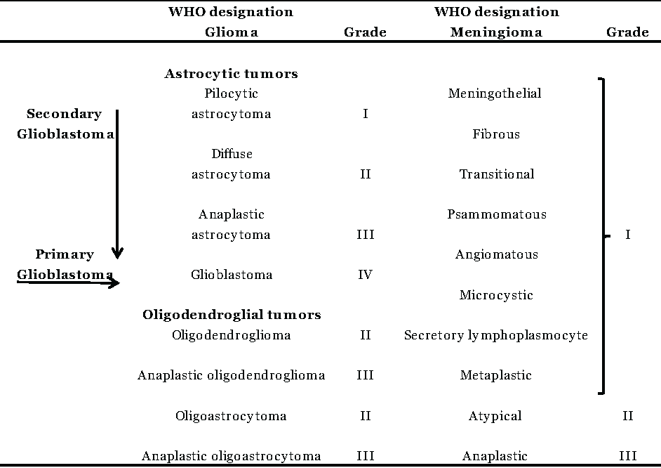 Table 1: Simplified schedule of the most common subtypes of meningioma and glioma classifications according to the 2007 WHO classification.