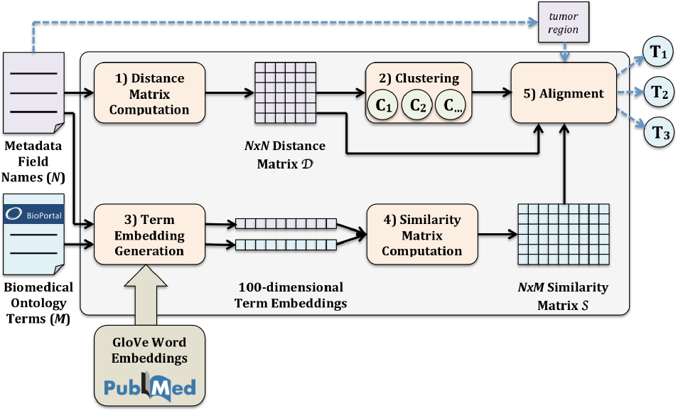Figure 1 for Aligning Biomedical Metadata with Ontologies Using Clustering and Embeddings