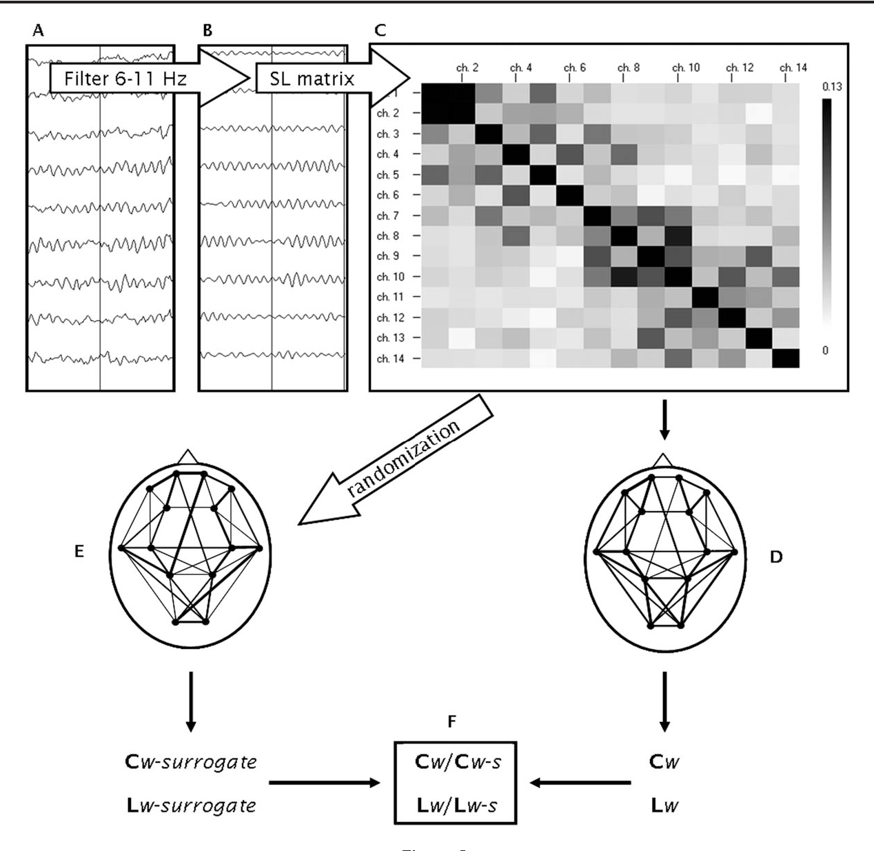 Network Analysis Of Resting State Eeg In The Developing Young Brain Jay Cees Site Diagram Eye Structure Comes With Maturation Semantic Scholar