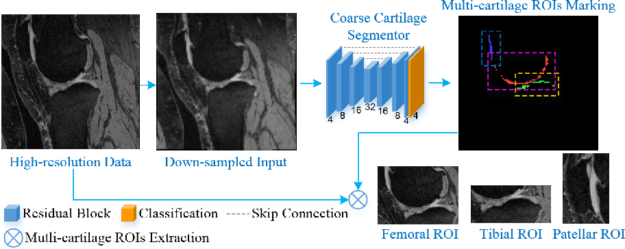 Figure 4 for Collaborative Multi-agent Learning for MR Knee Articular Cartilage Segmentation