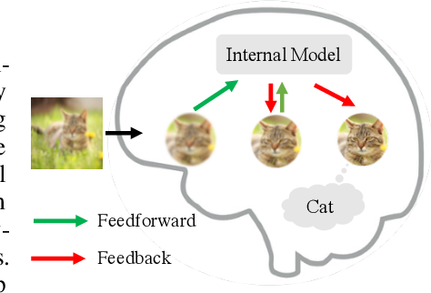 Figure 1 for Neural Networks with Recurrent Generative Feedback