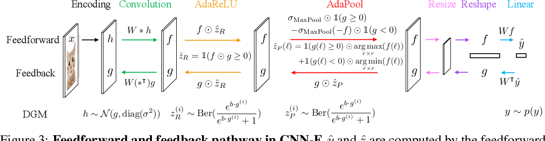 Figure 4 for Neural Networks with Recurrent Generative Feedback