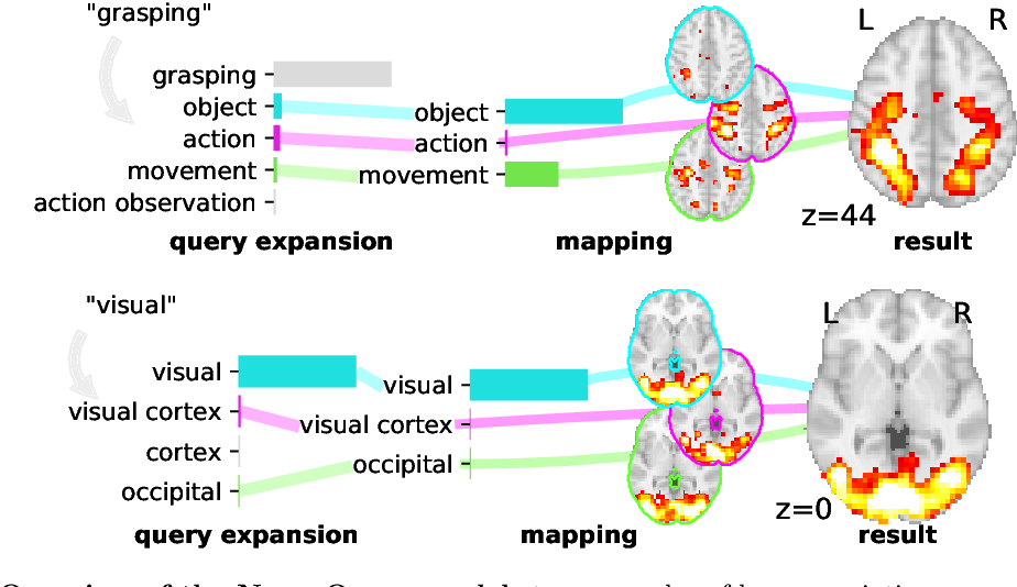 Figure 2 for NeuroQuery: comprehensive meta-analysis of human brain mapping