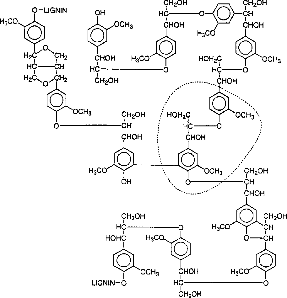 Figure 9 4 from 9 Enzymology and Molecular Genetics of Wood