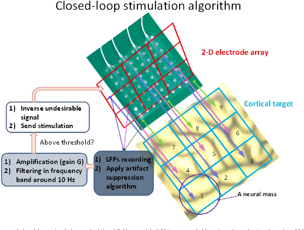 Figure 4 from Closed-loop cortical neuromodulation in Parkinson\'s ...