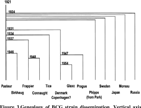 Growing Significance of Mycobacterium bovis in Human Health