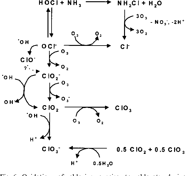 Figure 6 From Ozonation Of Drinking Water Part Ii Disinfection And