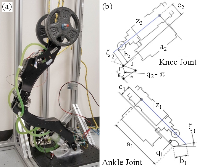 Figure 2 for Exploiting the Natural Dynamics of Series Elastic Robots by Actuator-Centered Sequential Linear Programming