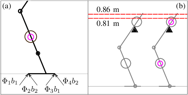 Figure 3 for Exploiting the Natural Dynamics of Series Elastic Robots by Actuator-Centered Sequential Linear Programming