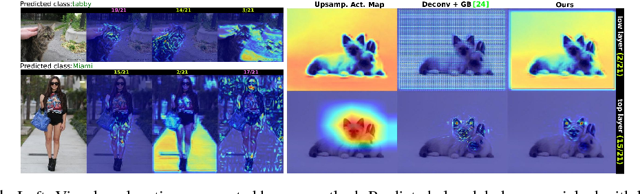 Figure 1 for Visual Explanation by Interpretation: Improving Visual Feedback Capabilities of Deep Neural Networks