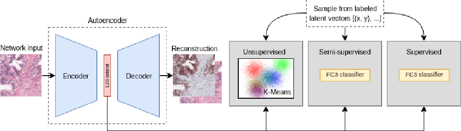 Figure 1 for Dealing with Label Scarcity in Computational Pathology: A Use Case in Prostate Cancer Classification