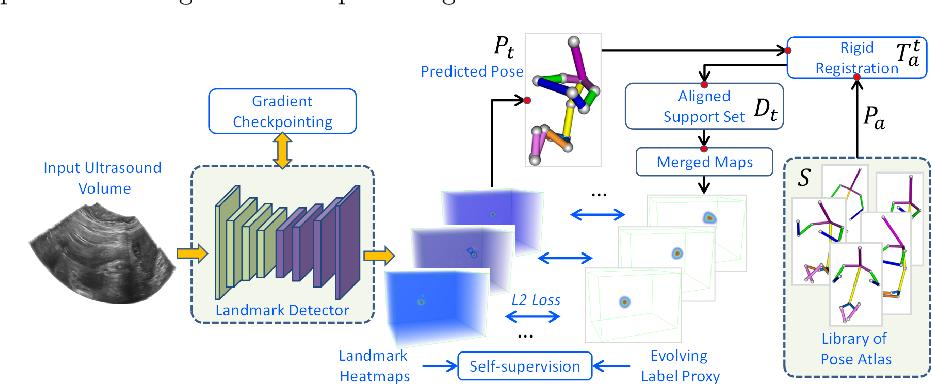 Figure 2 for FetusMap: Fetal Pose Estimation in 3D Ultrasound
