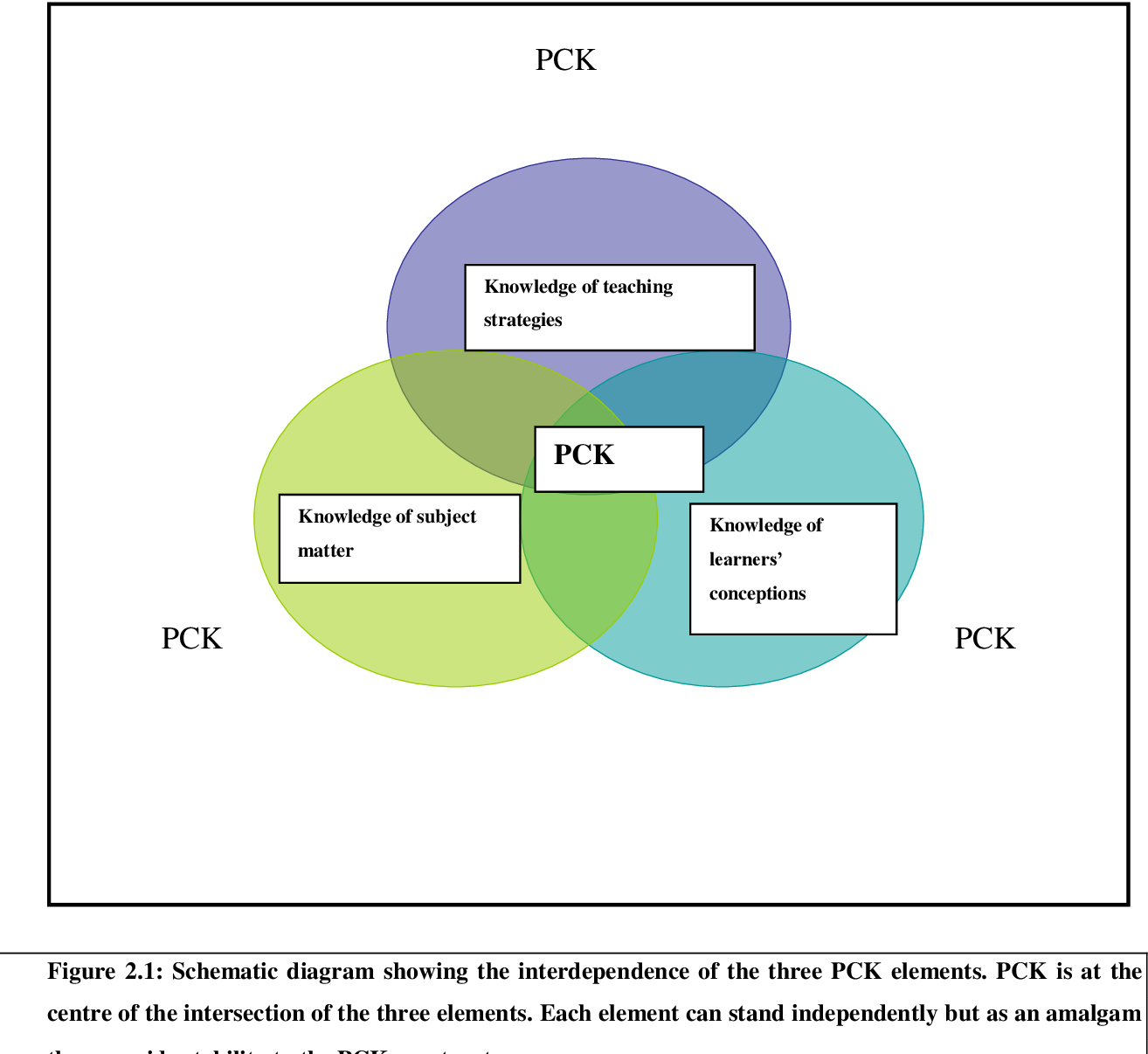 PDF] Effective teachers' pedagogical content knowledge in