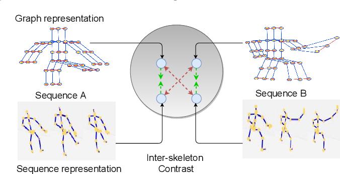 Figure 1 for Skeleton-Contrastive 3D Action Representation Learning