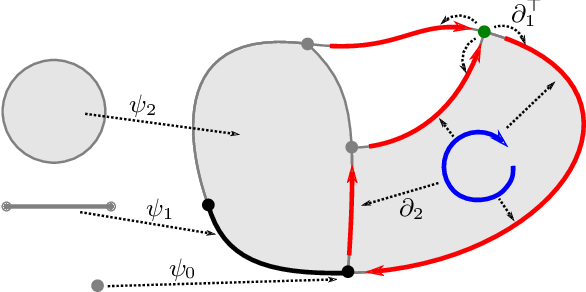 Figure 2 for Signal Processing on Cell Complexes