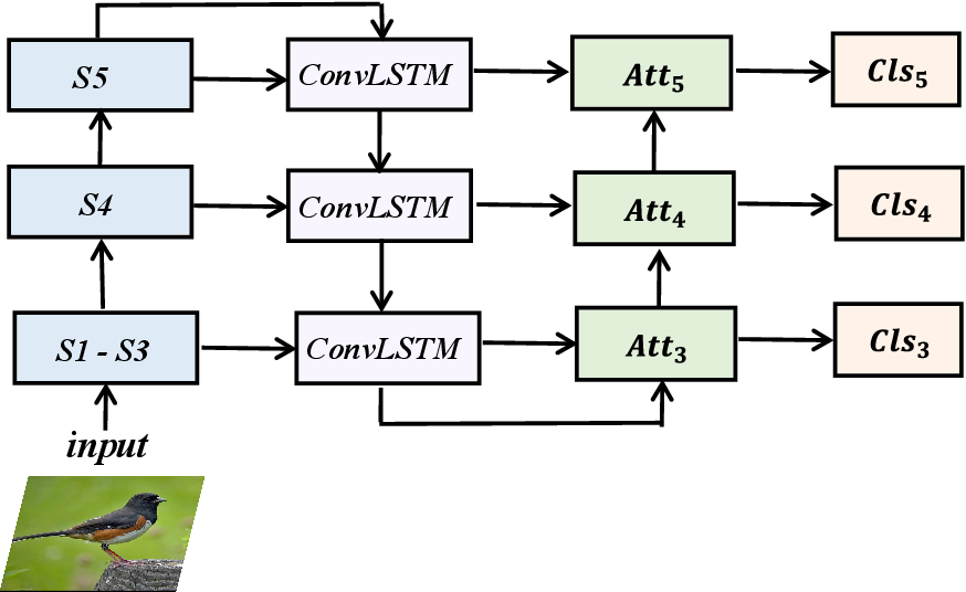 Figure 1 for Cross-layer Navigation Convolutional Neural Network for Fine-grained Visual Classification