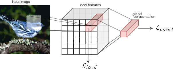 Figure 1 for Zero-Shot Learning from scratch (ZFS): leveraging local compositional representations