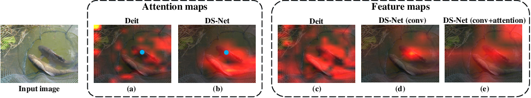 Figure 1 for Dual-stream Network for Visual Recognition