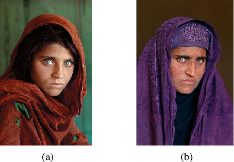 Figure 1 for Longitudinal Study of Child Face Recognition